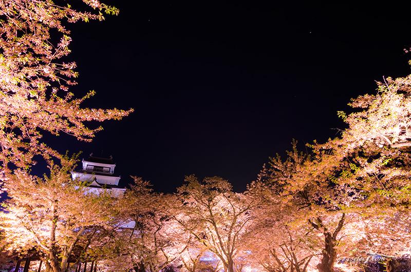 会津 鶴ヶ城(会津若松城)の桜鑑賞 会津 鶴ヶ城のお花見観光 アクセスと撮影攻略