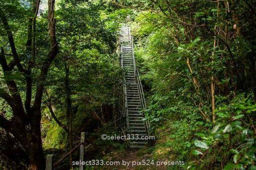 銚子の滝 愛媛県新居浜市の滝!銚子の滝へのアクセスマップ
