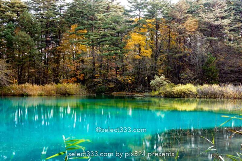 五色沼湖沼群と裏磐梯の沼巡り!エメラルドグリーンが美しい沼!避暑や紅葉期の観光エリア