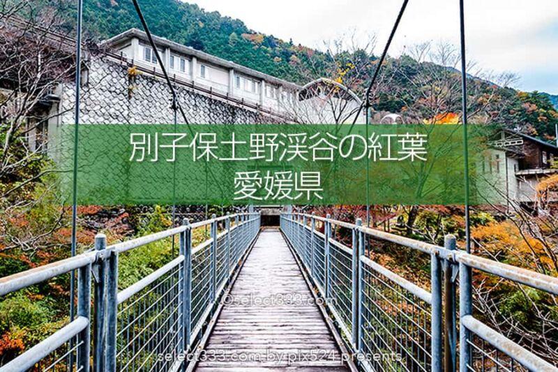 別子保土野渓谷紅葉見頃と甌穴群(おうけつぐん)別子道寄り道処!秋の風景と自然の足跡