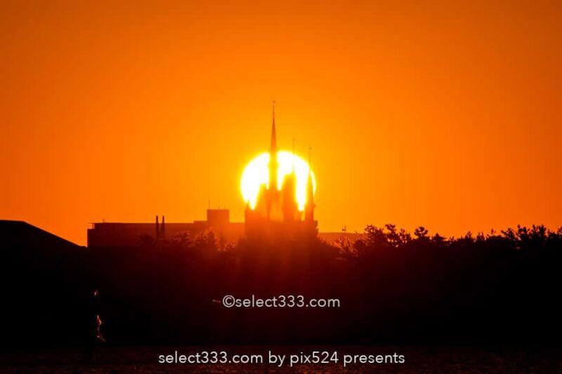 葛西臨海公園から日の出・月の出撮影!シンデレラ城と撮る朝日!東京の初日の出スポット