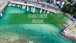 透き通る海 柏島の漁港風景!エメラルドグリーンの美しい海岸!楽園と呼べるフォトスポット