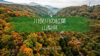 川俣川の紅葉を八ヶ岳高原大橋で!秋のドライブ紅葉スポット!紅葉撮影ポイント