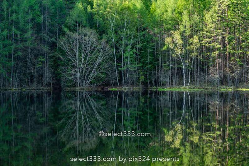 【御射鹿池】長野県奥蓼科の絶景池の四季風景!春夏秋冬の御射鹿池!茅野市の美しい自然