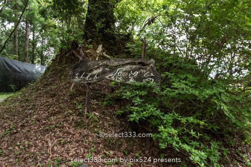 【なんてん展望台】土佐町の美しい棚田は里山の原風景が残る地!棚田をドローン撮影