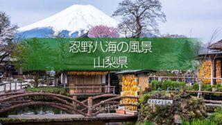 忍野八海と富士山の撮影!美しい湧泉群・富士山と古民家の景色!四季を問わない撮影地