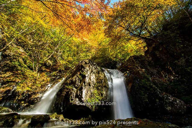 乙女の滝の紅葉撮影!佐久穂町古谷渓谷の滝と小川の紅葉風景!長野県の秋の景勝地