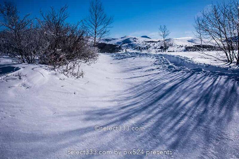 霧ヶ峰ビーナスライン雪景色と雪原の撮影!冬の絶景ドライブ!霧ヶ峰の冬景色の被写体