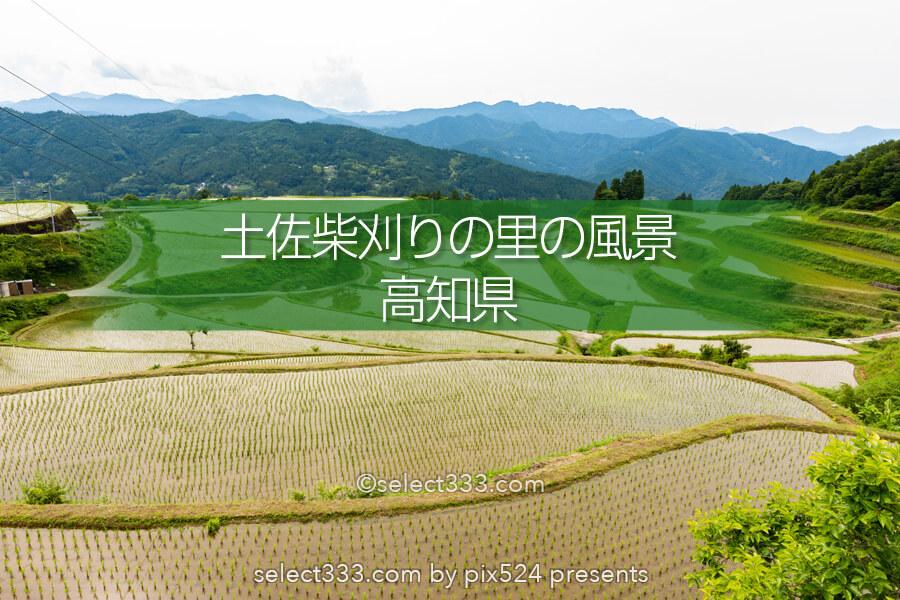 里山の原風景 山懐に広がる美しい棚田【土佐柴刈りの里】の風景!高知県の山間の美風景