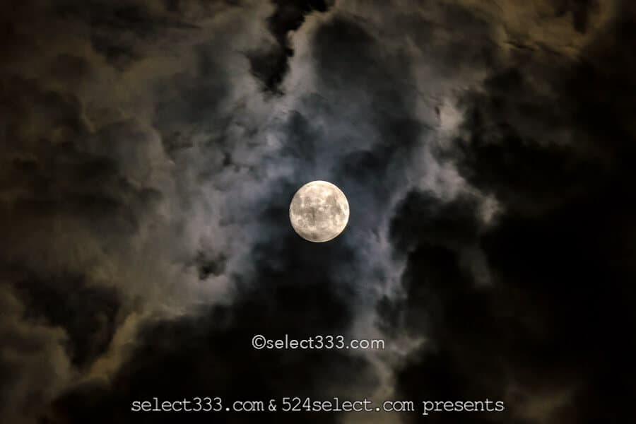 中秋の名月はいつ?中秋の名月は満月と限らない?仲秋との違いは?十五夜の月見と撮影!