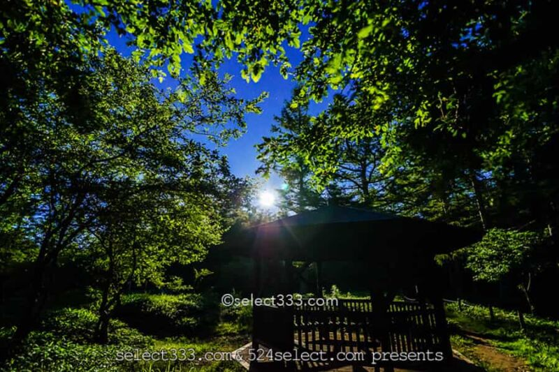 月光の風景撮影!月明かりの風景の撮影方法は?幻想の月光観望!色々な月の撮影