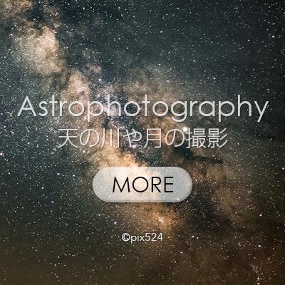 写真を楽しむブログ