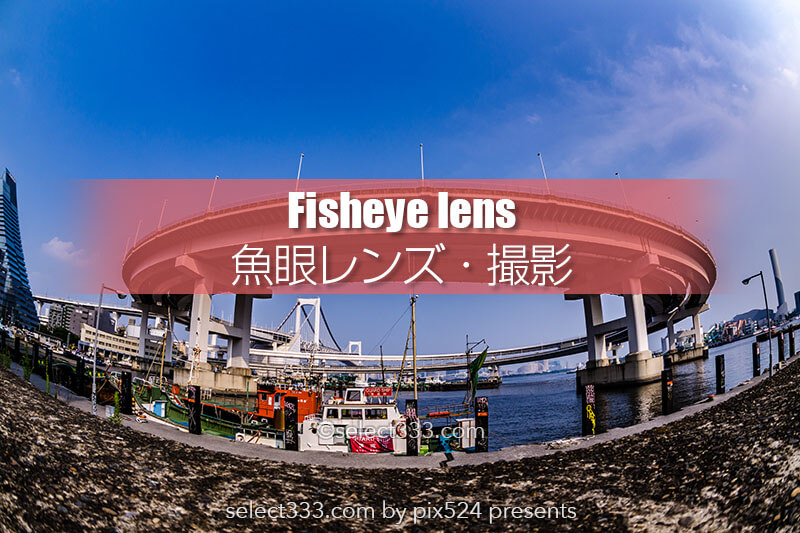 魚眼レンズで撮影しよう!フィッシュアイの広い構図で撮る風景!都庁や天の川魚眼の景色