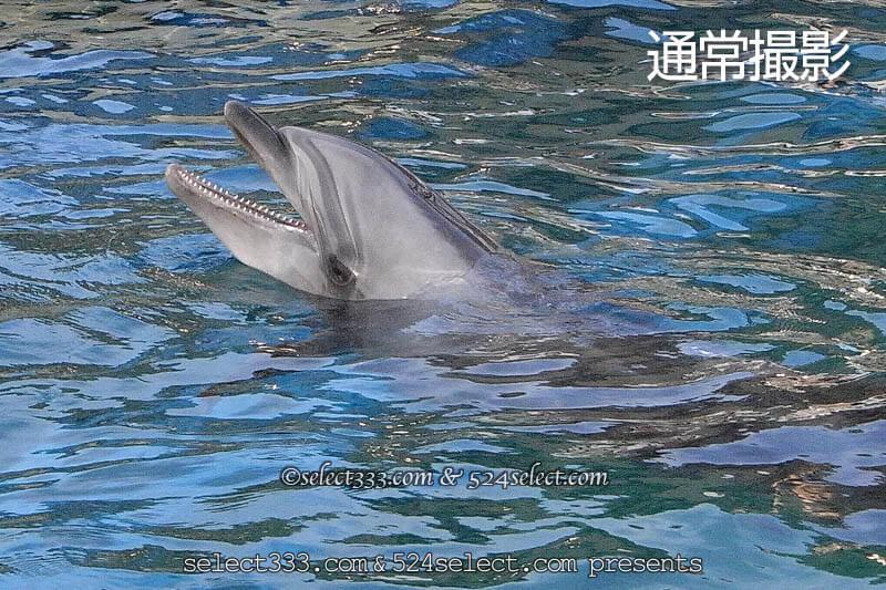 海の写真を補正して綺麗に見せよう!海岸風景のデジタル現像!波や海の風景補正方法