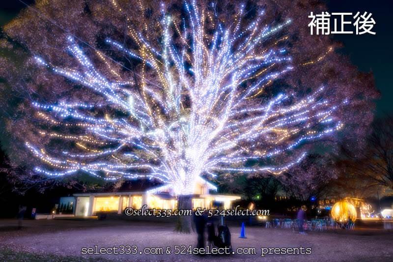 天の川の写真加工例!重ねてソフトン風にボカして明るく星強調!ソフトフィルター風加工