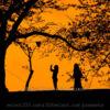 夕焼け空のシルエット撮影方法!影絵のような夕暮れ風景撮影!夕焼けの切り絵写真撮影