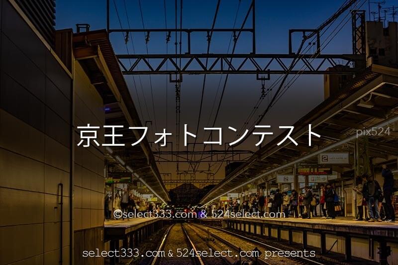 2019年第1回京王線・井の頭線沿線フォトコンテスト開催!京王線沿線や街並みを撮ろう!
