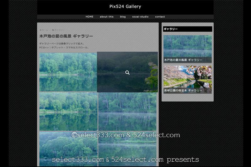 【Pix524 gallery】ギャラリーサイト開設!