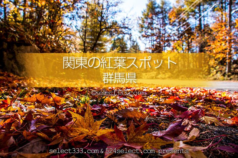 群馬県の紅葉スポット・紅葉撮影地!秋のドライブと紅葉狩り!見頃をチェック!