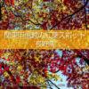 長野県の紅葉スポット・紅葉撮影地!紅葉狩り観光とドライブ!長野県の秋の旅行先