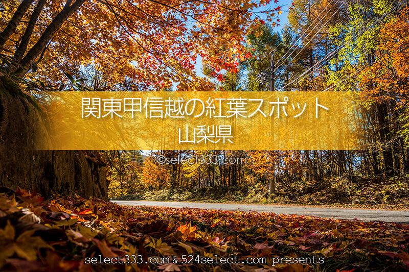 山梨県の紅葉スポット・紅葉撮影地!秋のドライブと紅葉狩り観光!山梨県紅葉の見頃