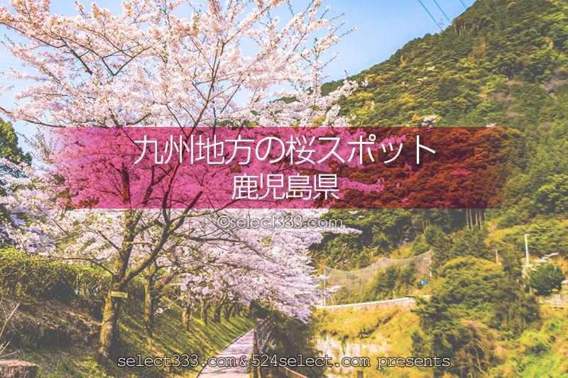 鹿児島県の桜の撮影スポットは?鹿児島の桜の名所を旅しよう!桜を楽しむ鹿児島県の旅行先