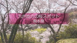 熊本県の桜のスポットに行こう!熊本県の桜撮影スポットはどこ?熊本の桜撮影旅行に!