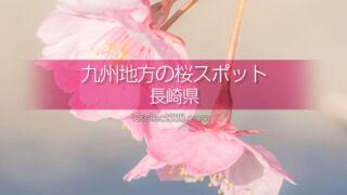 長崎県の桜の名所は?長崎県の桜撮影スポットで満開の桜を!長崎県の桜撮影旅行計画を!