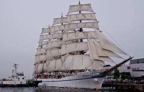 帆船を撮ろう!日本丸や海王丸を撮影しよう!今どこの海に?寄港地を調べて帆船撮影