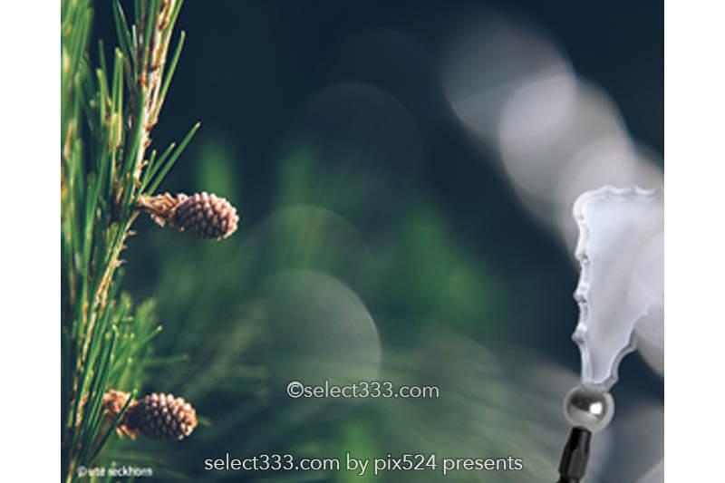 プリズム・ゴースト・前ボケ効果を作るマグネットフィルター!OMNIフィルター