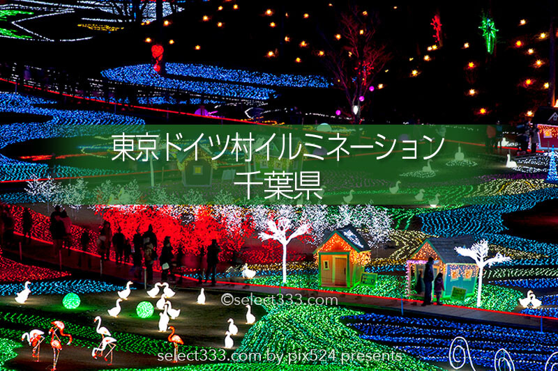 東京ドイツ村のイルミネーションを!関東三大イルミスポット!撮影攻略・混雑回避とアクセス