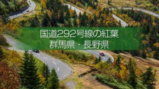 秋に巡る国道292号線の紅葉狩り!志賀高原・渋峠・横手山エリア!秋お勧めのドライブコース