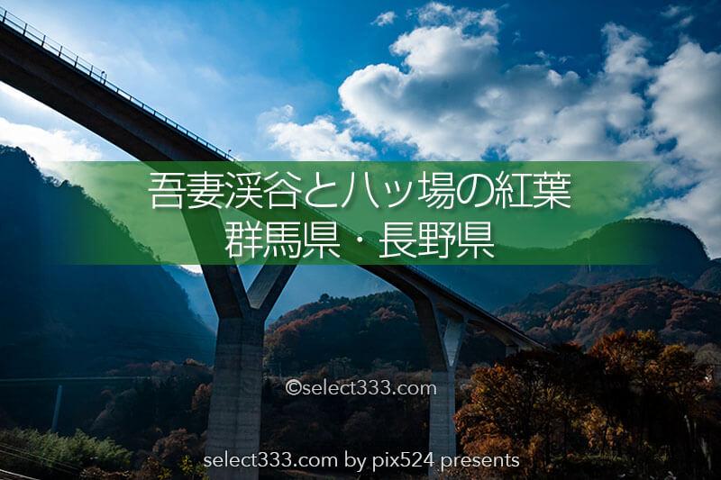 吾妻渓谷の紅葉と八ッ場!ドライブに最適日本ロマンチック街道!草津アクセスの寄り道に