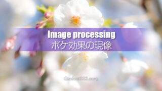 ピントが甘い写真あえてボカしてデジタル現像!失敗写真を生かす!RAW現像の一例