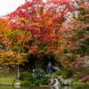二本松城(霞ヶ城公園)紅葉の見頃は?福島県名城秋の風景!紅葉狩りと撮影攻略
