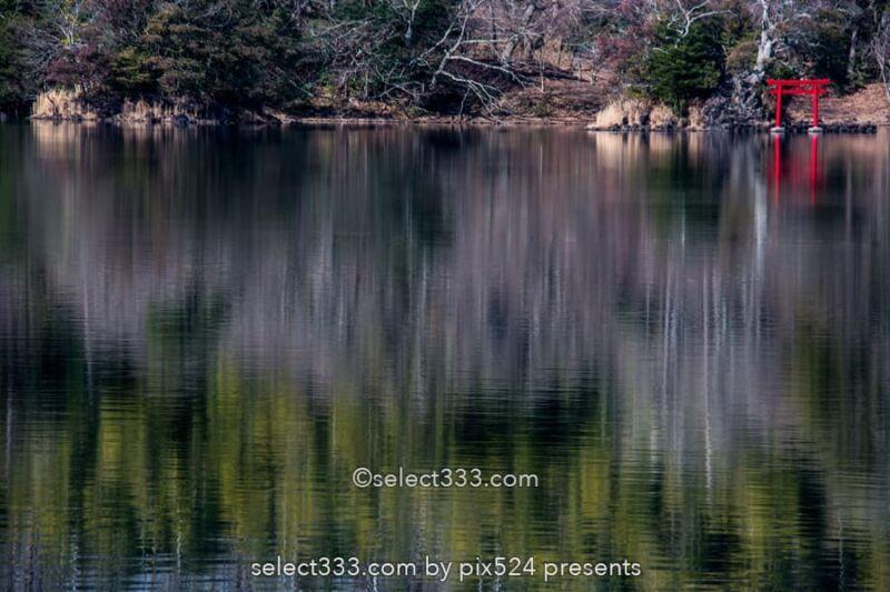 長時間露光の特殊撮影方法!水辺の森林風景を特別な手法で撮影!風景写真の作品作り